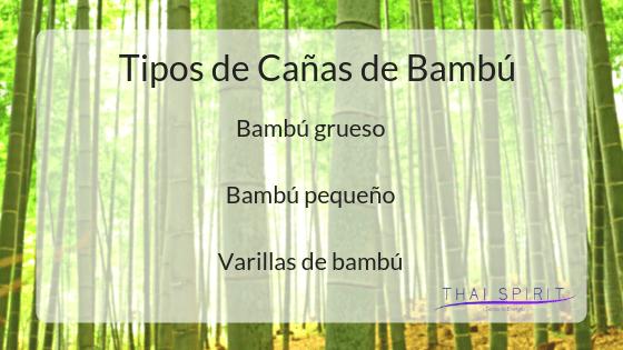 tipos-cañas-bambu